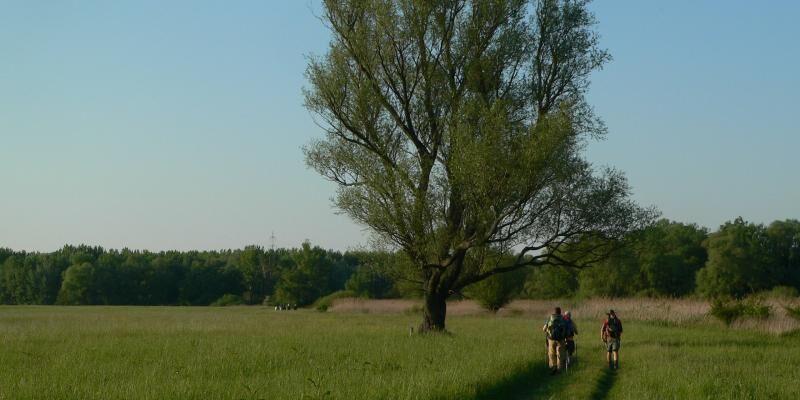 Mosonmagyaróvár-Rajka